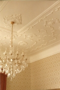 Ceiling roses, friezes and plaster panel cornices